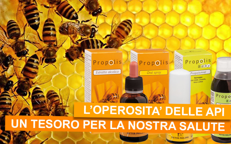 La Propoli: un vero e proprio tesoro prodotto dalle api